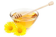 Fresh honey Royalty Free Stock Photography