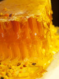 Fresh Honeycomb and bee pollen. close up Royalty Free Stock Photo