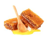 Fresh honeycombs and spoon stock image