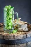 Fresh hop and malt on wooden barrel. On dark background royalty free stock photos