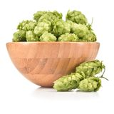 Hops in wooden bowl isolated on white background. Royalty Free Stock Images