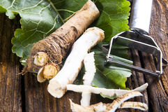 Fresh horseradish Royalty Free Stock Images