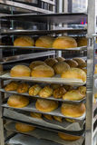 Fresh hot buns in handcart from oven Stock Images