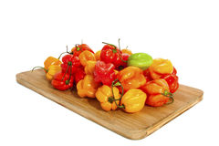 Fresh hot chili peppers Royalty Free Stock Photos