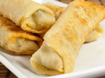 Fresh Hot Egg Rolls Stock Photography