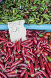 Fresh Hot Peppers (1 of 2) Royalty Free Stock Photography