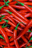 Fresh hot red chili peppers in a supermarket stock images