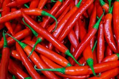 Fresh hot red chili peppers in a supermarket royalty free stock photos