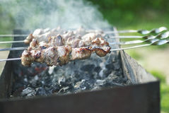 Fresh hot skewers Stock Image