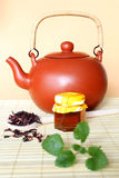 Fresh hot tea Royalty Free Stock Photography