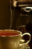 Fresh hot tea Royalty Free Stock Images
