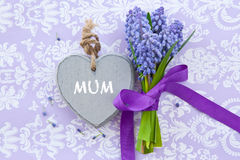 Fresh hyacinths and a heart Stock Photography