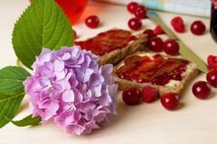 Fresh hydrangea bloom on board with toasts Stock Photos