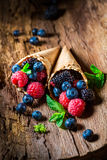 Fresh ice cream with berry fruits in waffels as concept. On old bark stock photography