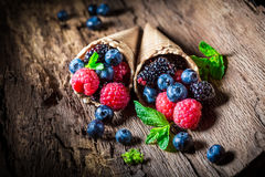 Fresh ice cream with berry fruits on wooden bark Royalty Free Stock Image