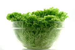Fresh iceberg lettuce Stock Photos