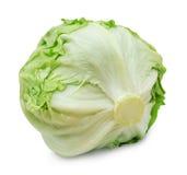 Fresh iceberg lettuce isolated on a white background Royalty Free Stock Photos