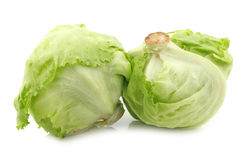 Fresh iceberg lettuce Stock Photos