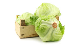 Fresh iceberg lettuce in a wooden crate Stock Photography
