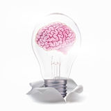 Fresh idea with brain in lamp Royalty Free Stock Photography