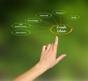 Fresh Idea Stock Image