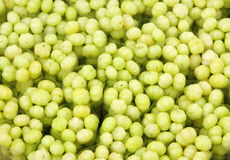 Fresh Indian Gooseberries arranged in packets Stock Photos