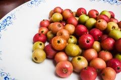 Fresh Indian Plum (Flacourtia sp.) Stock Photo