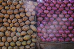 Fresh red onions and potatos lying in rows on vegetable market. Fresh indian vegetables stored on market stalls: red onions and potatos Royalty Free Stock Photography