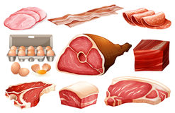Fresh ingredient for meat products. Illustration Stock Photography