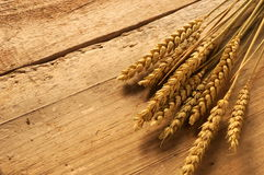 Fresh ingredients bakery wheat flour production Royalty Free Stock Images
