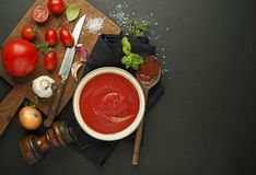 Tomato sauce with ingredients for cooking Stock Images
