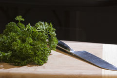 Fresh ingredients on a cutting board Stock Images