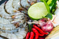Fresh ingredients food Royalty Free Stock Photos