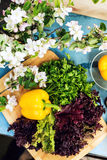 Fresh ingredients for healthy cooking or salad making in spring. Food, food styling, cooking. Fresh ingredients for healthy cooking or salad making in spring Stock Photo