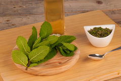 Mint sauce ingredients Royalty Free Stock Photos