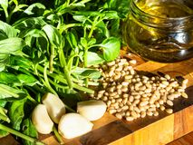 Fresh ingredients for Pesto on wooden board royalty free stock photo