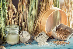Fresh ingredients for rolls and bread with whole grains Stock Images