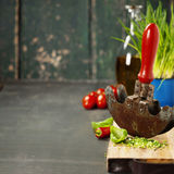 Fresh ingredients and rustic mezzaluna Royalty Free Stock Photography