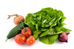 Fresh ingredients for salad Royalty Free Stock Photo