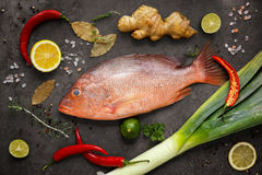Fresh ingredients to cook fish ,red snapper, leak, lime, lemon, Stock Photos