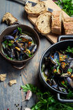 Fresh ingredients to prepare mussels. On old wooden table Stock Images