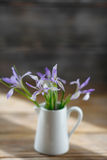 Fresh iris flowers in white jug Stock Image