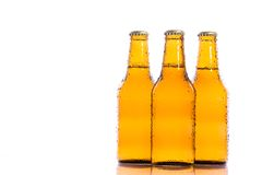 Fresh isolated beers Royalty Free Stock Photography