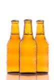 Fresh isolated beers stock photo