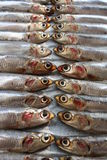 Fresh Italian anchovies. On plate Stock Photo