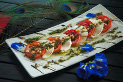 Fresh Italian caprese salad with mozzarella, tomatoes and green basil leaves on white plate Stock Images