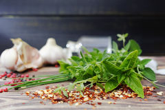 Fresh italian kitchen herbs and spices - oregano, basil, marjora Stock Photos
