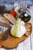 Fresh Italian mozzarella burrata Royalty Free Stock Photo