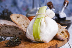 Fresh Italian mozzarella burrata Royalty Free Stock Image