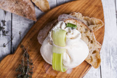 Fresh Italian mozzarella burrata Royalty Free Stock Images
